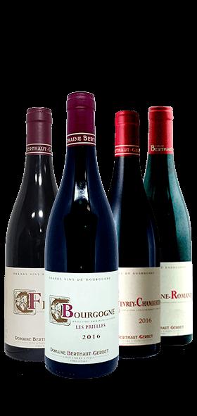 Garrada do vinho Cote de Nuits por Amelie Berthaut