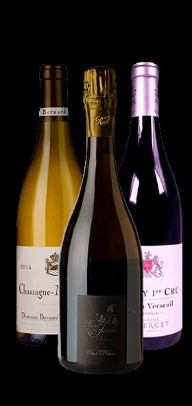 Garrada do vinho Conoisseur