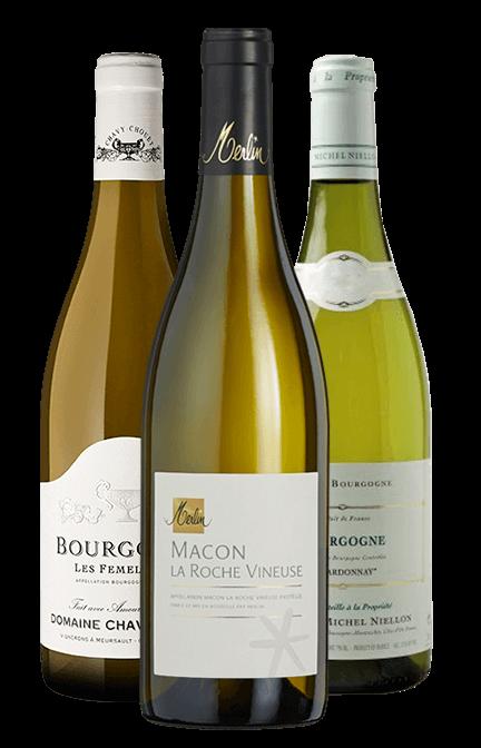 Garrafa do vinho Selecao Chardonnays da Borgonha