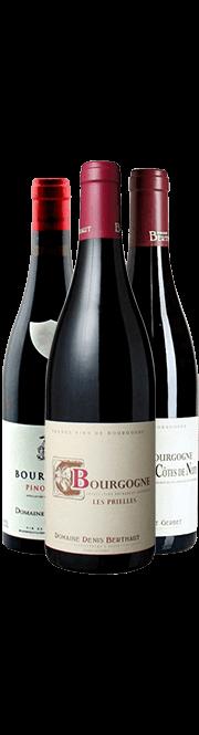 Garrafa do vinho Borgonha o Berço da Pinot Noir