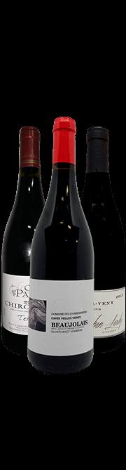 Garrada do vinho Bojo