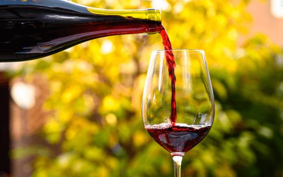Vinhos na região Beaujolais